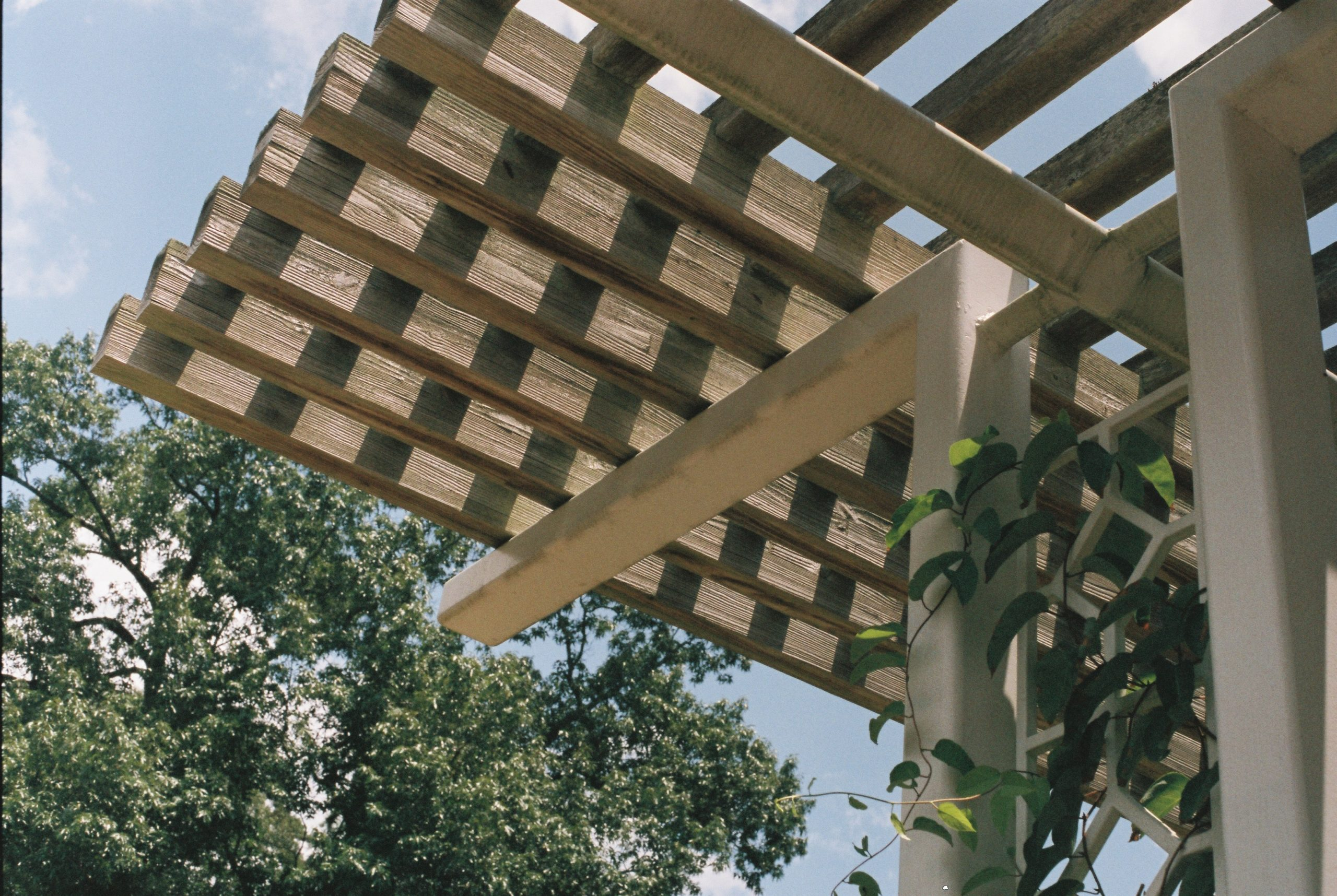 Outdoor Living Spaces: Choosing a Patio or Pergola Roof Design