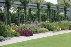 Revamp Your Outdoors: 3 Reasons to Invest in Pergolas