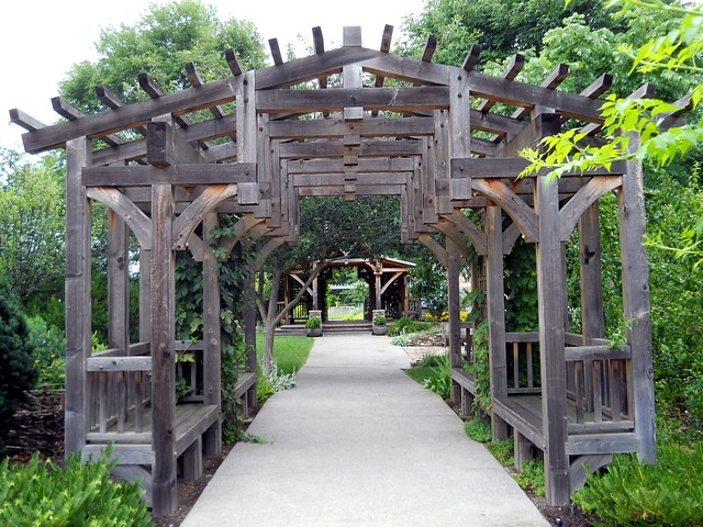 Lawn Essentials: Why Should You Install a Backyard Pergola